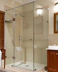 Frameless shower doors with panels